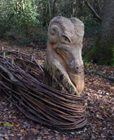 Dragon in Magdalen Wood